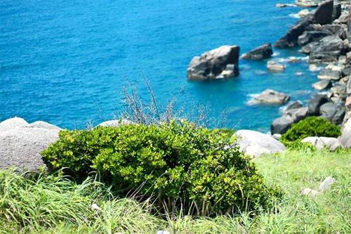 Đến Đại Lãnh ngắm biển trời trong xanh